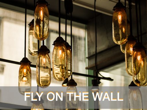 FLY ON THE WALL 510x382 - OPNAME