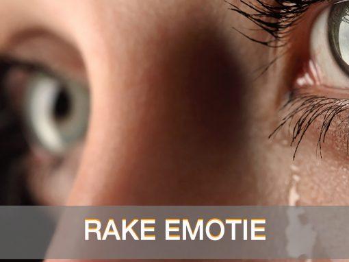 RAKE EMOTIE 1 510x382 - HOME