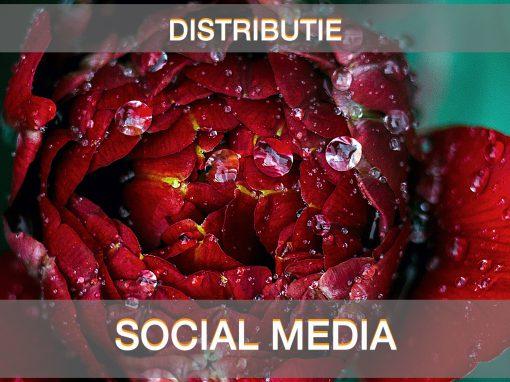 SOCIAL MEDIA 1 510x382 - HOME